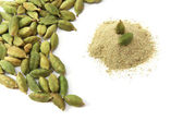 Cardamom isolated — Stock Photo
