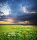 Meadow in mountain — Stock Photo