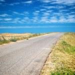 Road in desert — Stock Photo #38598231
