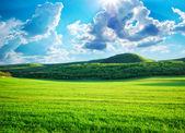 Zielony łąka w górach — Zdjęcie stockowe