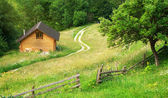 House in mountain meadow — Stock Photo