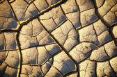 Tierra seca — Foto de Stock