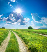 Road lane and deep blue sky — Stock Photo