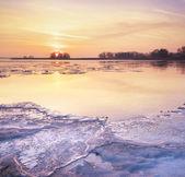 Icy morning — Stock Photo