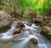 Spring rill flow. — Stock Photo