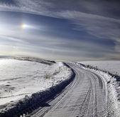 Lantlig väg på vintern — Stockfoto