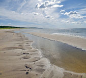 Baltic sea beach — Stockfoto