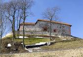 Castle hill in şafak — Stok fotoğraf