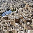 Giant's Causeway — Photo #22877380