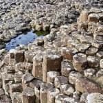 Giant's Causeway — Zdjęcie stockowe