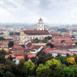 Stock Photo: Panoramold town of Vilnius