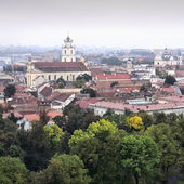 Panorama old town of Vilnius — Foto Stock