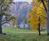 Asveja regionale park — Stockfoto