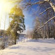 Winter landscape  — Stock Photo #42050547