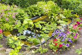 Fragment garden with an artificial pond — Stock Photo