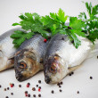 Herring — Stock Photo #12459713