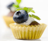 Cupcakes with fresh blueberries — Stock Photo