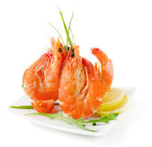 Tiger shrimps — Foto Stock