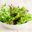 Salad mix — Stock Photo #24906829