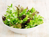 Salad mix — Stock Photo
