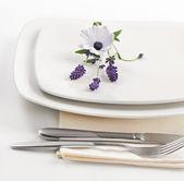 Plate setting — Stock Photo