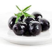 Oliwki czarne — Zdjęcie stockowe