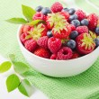 Mix of fresh berries — Stock Photo #28719073