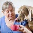 Stock Photo: Senior womwith dog drinking tea