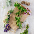 Herbs — Stock Photo #32341925
