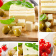 Collage with cheese — Stock Photo