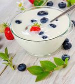Jogurt — Stock fotografie