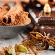 Spices and Broken chocolate bar — Stock Photo #41928325