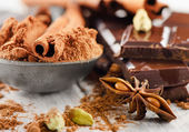 Spices and Broken chocolate bar — Stock Photo