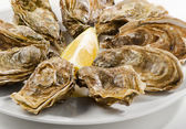 Fresh oysters on a white plate — Stok fotoğraf