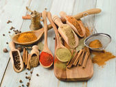 Various kind of Spices — Stock Photo
