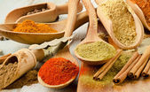 Various kind of Spices — Stok fotoğraf