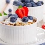Muesli and yogurt with fresh berries. — Stock Photo #48125475