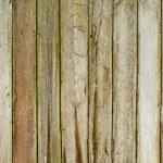 Wood background — Stock Photo #49339767