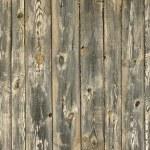Wood background — Stock Photo #49419221
