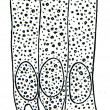 Cells of ciliated epithelium — Stock Photo #11864534