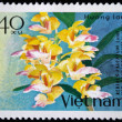 Royalty-Free Stock Photo: VIETNAM - CIRCA 1978: A stamp printed in the Vietnam shows flower, circa 1978