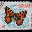 MONGOLIA - CIRCA 1985: A stamp printed in Mongolia showing butterfly, circa 1985 — Stock Photo #12160809