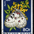 HUNGARY - CIRC1974: stamp printed in Hungary shows butterfly, circ1974 — Stock Photo #12160927
