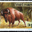 VIETNAM - CIRCA 1982: A stamp printed in Vietnam shows bison, series, circa 1982 — Stock Photo