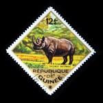 GUINEA - CIRCA 1975: A stamp printed in Guinea shows Black Rhinoceros - Diceros bicornis, circa 1975 — Stock Photo