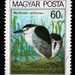 HUNGARY - CIRCA 1980: A stamp printed in Hungary shows bird Black-crowned Night Heron - Nycticorax nycticorax, circa 1980 — Stok fotoğraf