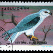 VIETNAM - CIRCA 1982: A stamp printed in Vietnam shows Black-winged Kite - Elanus caeruleus, series, circa 1982 — Stock Photo #12161165