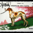 Stock Photo: CUB- CIRC1976: stamp printed in Cubshows Dog Borzoi, stamp is from series, circ1976