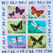 DPR KOREA - CIRCA 1977: A stamp printed by DPR Korea (North Korea) shows buterflies and fly dragons, circa 1977 — Stock Photo