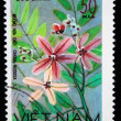 VIETNAM - CIRCA 1978: A stamp printed in Vietnam shows Golden Shower Tree - Cassia Nodosa, series, circa 1978 — Stock Photo
